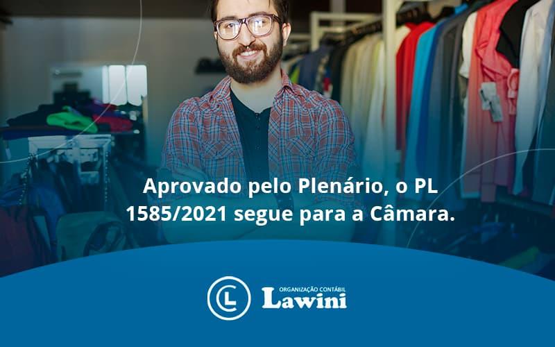 Aprovado Pleno Plenario O Pl 15852021 Segue Para A Camara Lawini Contabilidade - Organização Contábil Lawini