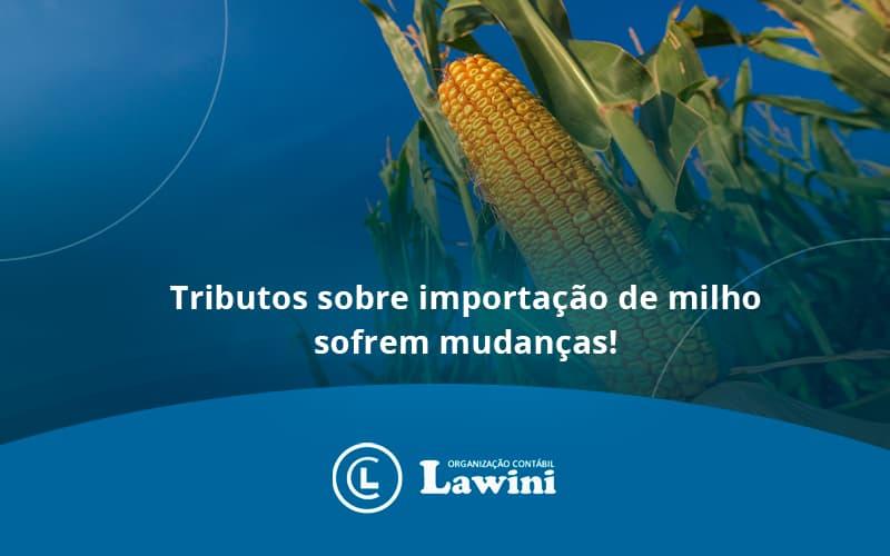Tributos Sobre Importação De Milho Sofrem Mudanças!